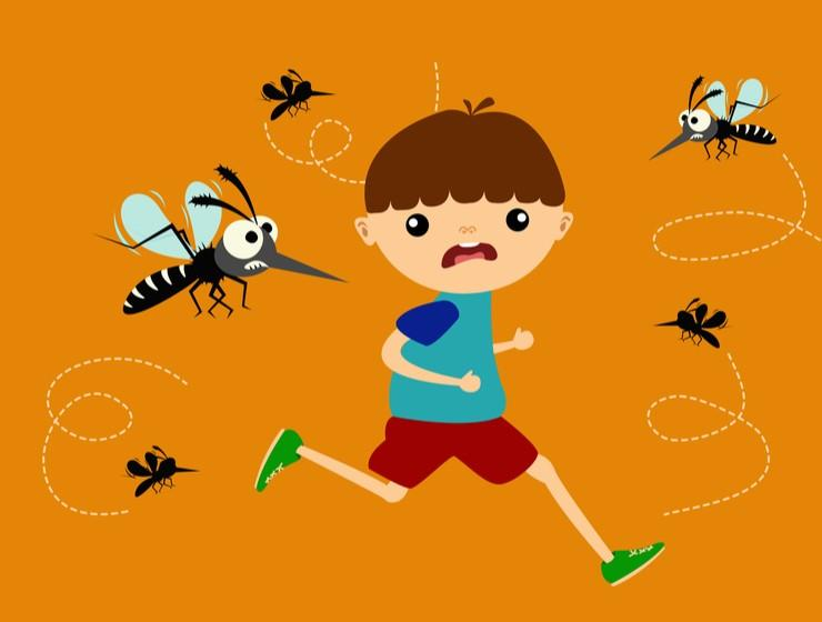 Mosquitoes - 5 things that attracts them?